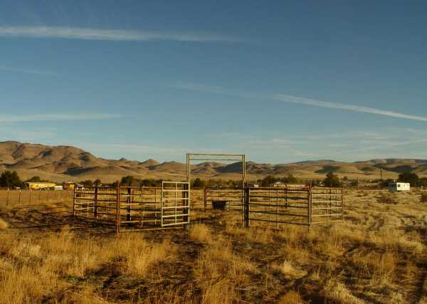 Horse Trap in Stagecoach, NV October 24, 2011